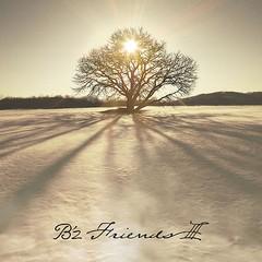 送料無料有 特典/[CD]/B'z/FRIENDS III [DVD付初...