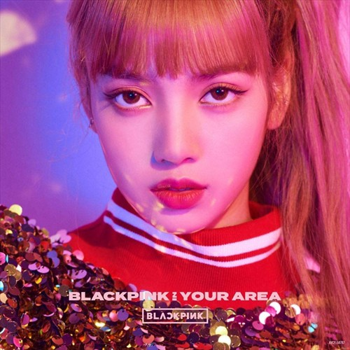 (おまけ付)2018.12.05発売 BLACKPINK IN YOUR ARE...