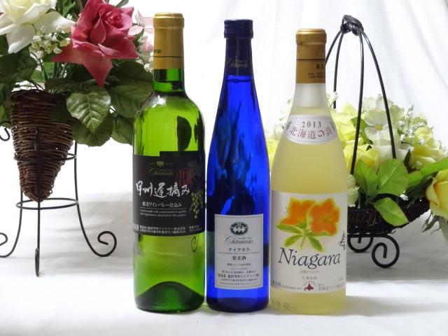 国産甘口白ワイン3本セット(ナイアガラ 遅摘み...