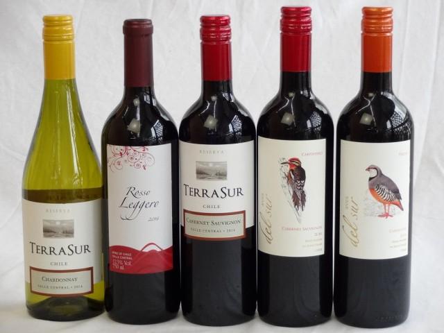 チリ赤・白ワイン5本セット テラ・スル赤・白・ク...
