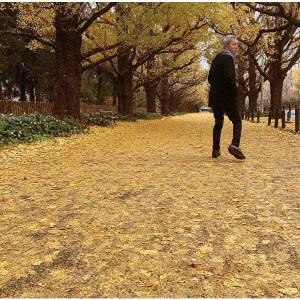 【CD】或る秋の日(受注生産限定盤)/佐野元春 [POC...
