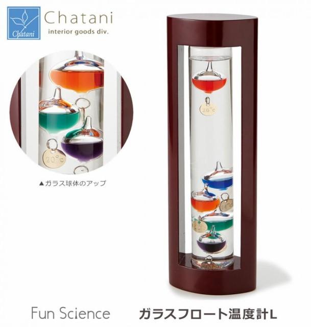茶谷産業 Fun Science ファンサイエンス ガラスフ...