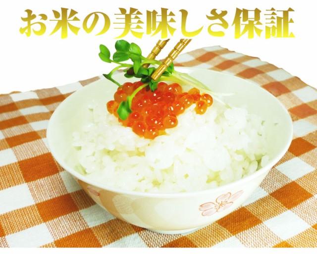 お米 5kg 安い 1等米 秋田県 白米か玄米 あきたこまち 5キロ 29年産 送料無料 北海道・沖縄・一部地域はキャンセル対応