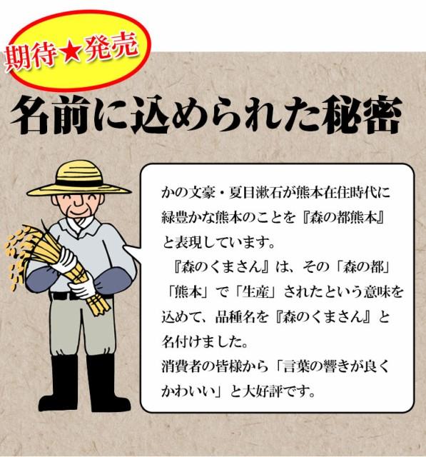 お米 5kg 安い 熊本県 白米 森のくまさん 5キロ 29年産 特A 送料無料 北海道・沖縄・一部地域はキャンセル対応