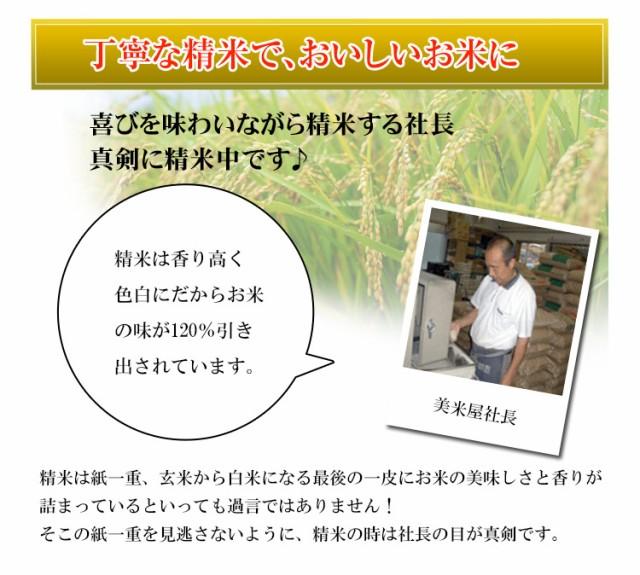 お米 10kg 安い 1等米 山形県 無洗米 こしひかり 10キロ 29年産 送料無料 北海道・沖縄・一部地域はキャンセル対応