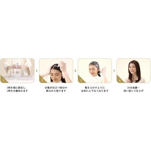 シエロ デザイニングカラー ミントアッシュ(32g+96mL+10mL+10g)(発送可能時期:1週間-10日(通常))[白髪染め 女性用]