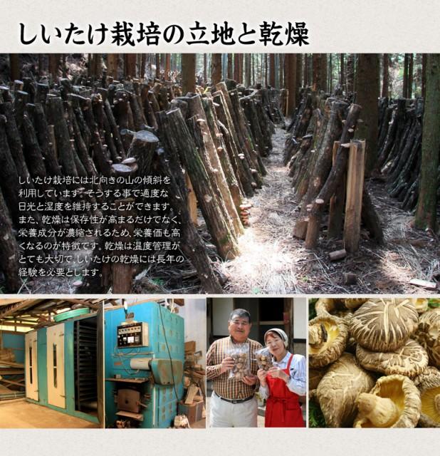 【送料無料】 乾燥しいたけ シイタケ 椎茸 九州産 天然 乾燥野菜 干ししいたけ 干し椎茸 バレ 300g