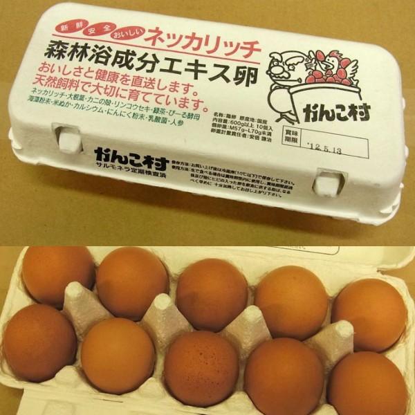 がんこ村 赤玉 鶏卵 600g以上10玉入