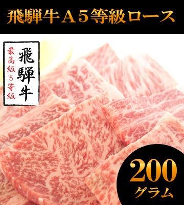 送料無料/A5飛騨牛焼肉用カットロース200g+カルビ200g/限定飛騨牛ハンバーグ2個付/冷凍便