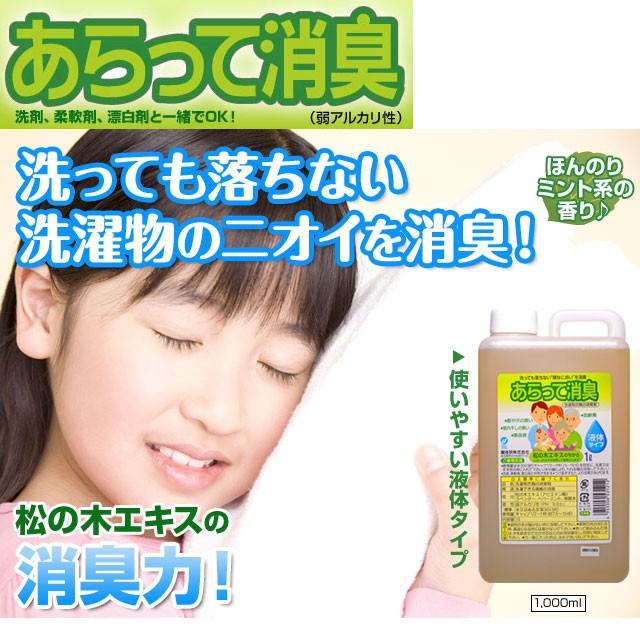 お得な3個セット 松の木エキスの力 あらって消臭 洗濯用衣類の消臭剤(1000ml)