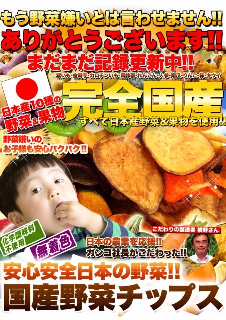国産☆野菜チップスお試し50g【食品】