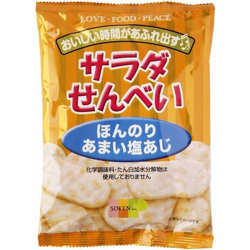 創健社 サラダせんべい ほんのりあまい塩あじ 48g(16枚)