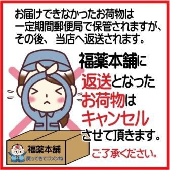 フリスクマスク ペパーミント 個包装2枚入×10個[ゆうパケット・送料無料]