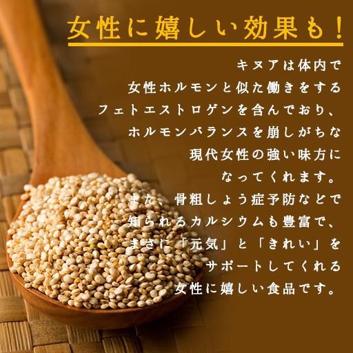 キヌア 送料無料 500g 無添加 オーガニック 有機 スーパーフード 雑穀