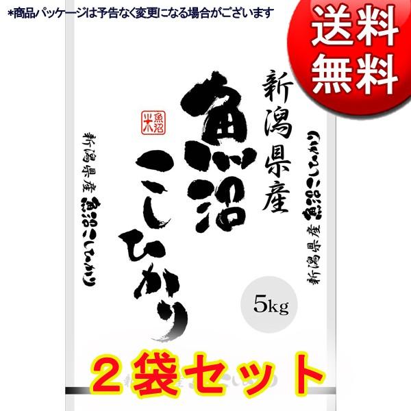新潟県産 魚沼こしひかり 5kg×2 (計10kg) 【直送品】【送料無料】