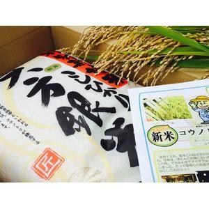 〔平成29年産〕コウノトリ舞い降りるコシヒカリ 六方銀米 5kg 玄米