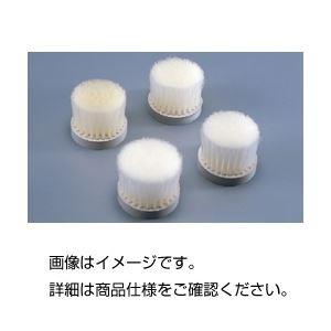 (まとめ)ふるい用ナイロンブラシNo3 適用ふるい(目の開き):105~63メッシュ 〔×5セット〕