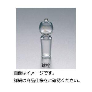 (まとめ)共通摺合球栓 19/38〔×5セット〕