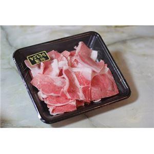 鹿児島黒豚「さつま」切り落とし 2kg【代引不可】
