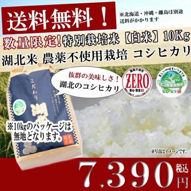 (新米/平成28年度産)農薬不使用米コシヒカリ ZERO【白米】10kg