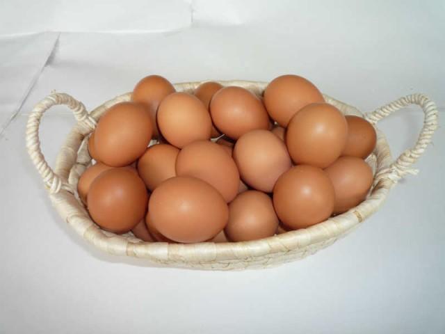 【送料無料】【九州産特選地卵】貴黄卵30個セット(Mサイズ)【卵の王様・貴黄卵】
