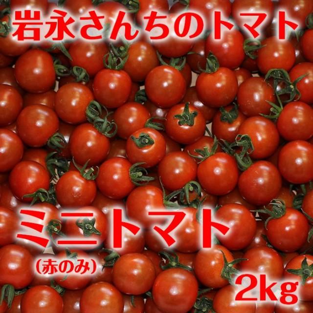【送料無料】岩永さんちのとまと ミニトマト 赤 2kg【産地直送】