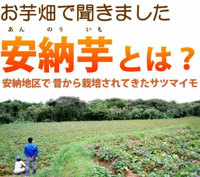 種子島の蜜芋「安納芋」って?