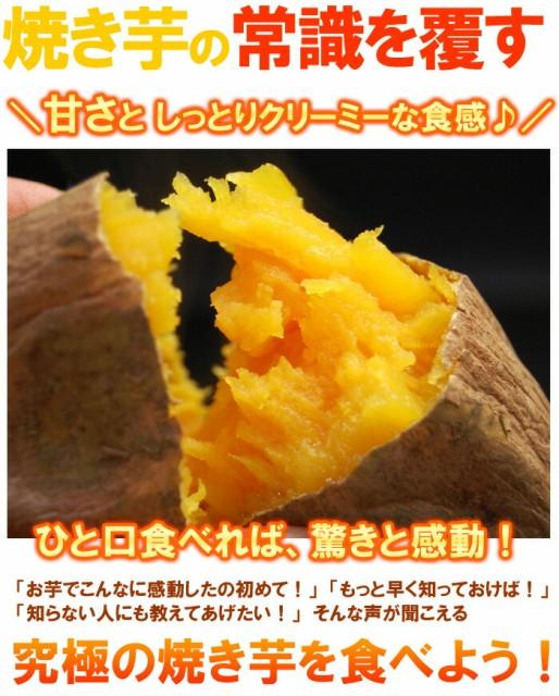 焼き芋の常識を覆すサツマイモ