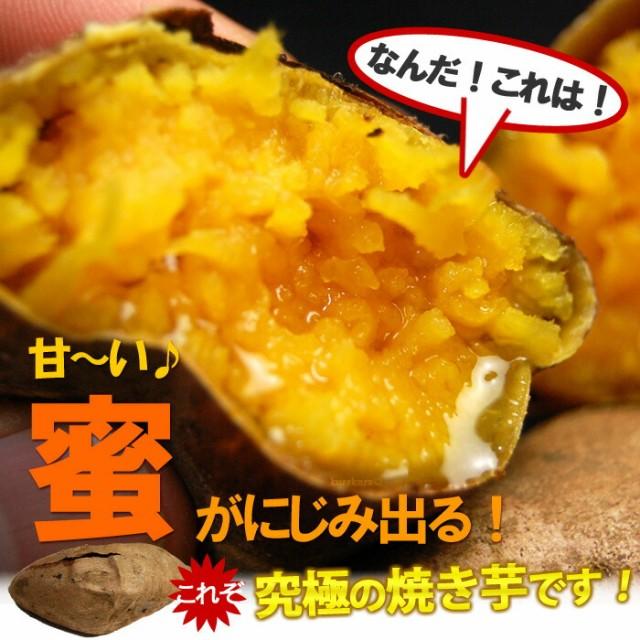 蜜が出る究極の焼き芋「安納芋」