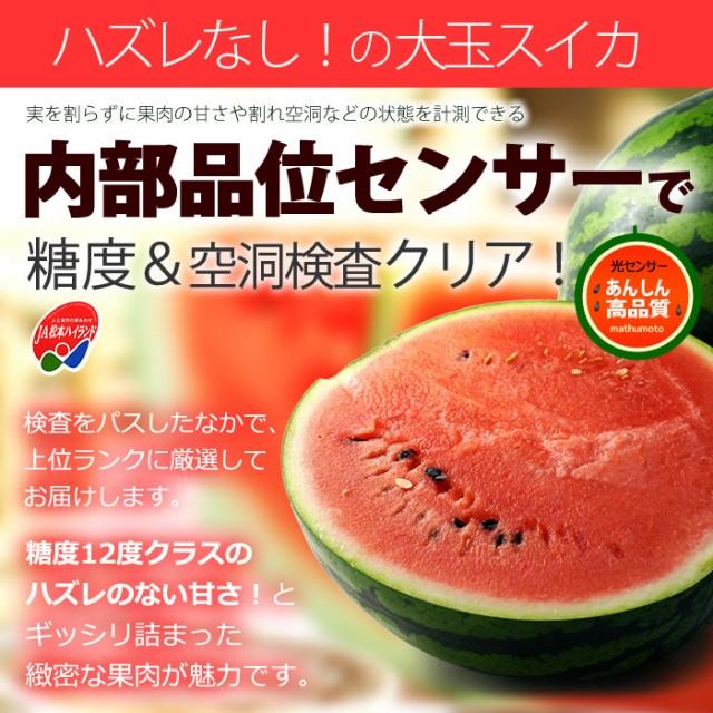 松本ハイランド光糖度センサー選別大玉スイカ
