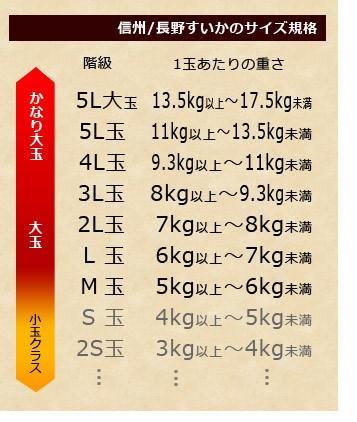 長野県産の大玉西瓜サイズ規格表