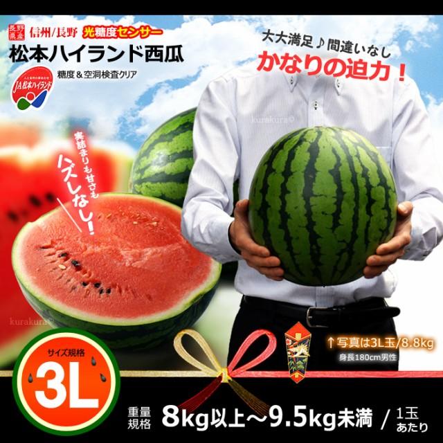 長野JA松本ハイランドスイカ大玉3L販売イメージ