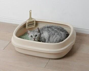 アイリスオーヤマ ネコのトイレ NE-550 トイレ ミルキーブルーNE-550(代引き不可)