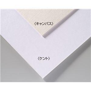 (まとめ)アーテック A&Bオリジナルアートボード B4キャンバス 【×30セット】