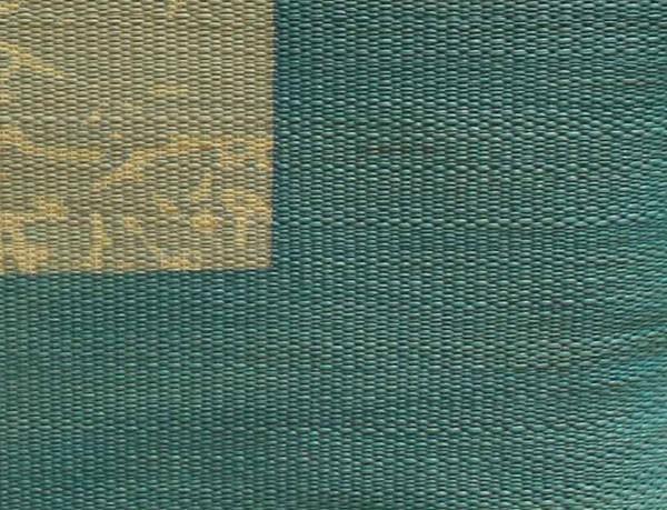 純国産 捺染返し い草座布団 『草美(くさび) 2枚組』 ブラウン 約55×55cm×2P(代引不可)【送料無料】