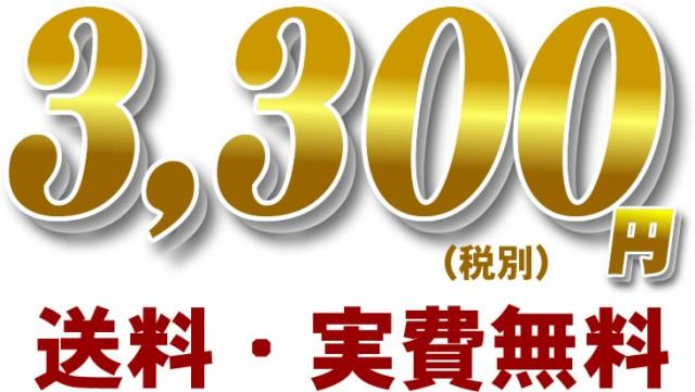 41.6%OFF 2,980円 送料無料