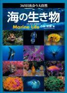 【単行本】 小林安雅 / 365日出会う大自然 海の生き物 送料無料