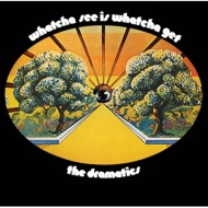 【CD国内】 Dramatics ドラマティックス / Whatcha See Is Whatcha Get (Stax Remasters) + 10