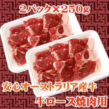 【商番1105】【11時までの注文で当日発送!(水日祝除く)】 焼肉に最適カット 牛ロース焼肉用 500g(250g×2)