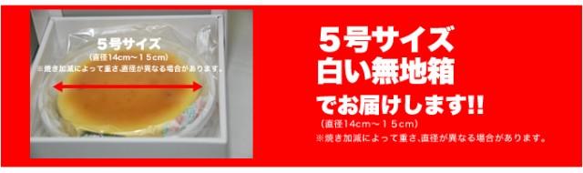 絶品ベイクドチーズケーキ5号/ケーキ/洋菓子/冷凍A