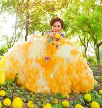 撮影衣装 編み上げ /フリーサイズ/ウェディングドレス/手創り/二次会 結婚式 花嫁 パーティー/カラードレス舞台用