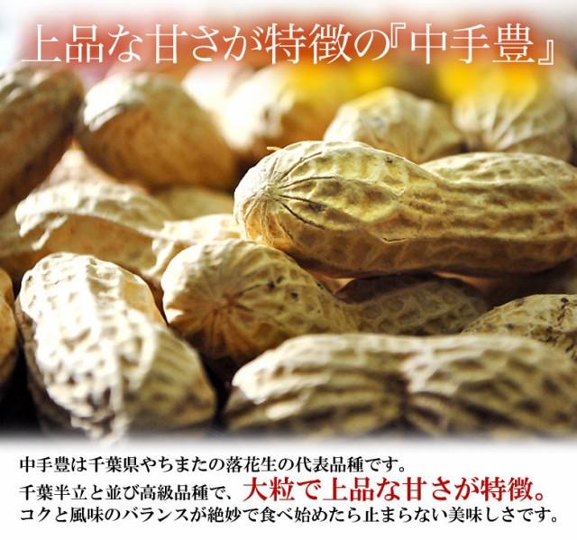 《送料無料》千葉県八街産 殻付き落花生 90g×10袋 ○