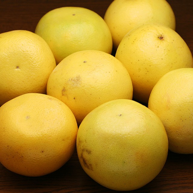白い果肉のグレープフルーツ(ホワイト)10玉【季節に応じて産地を厳選】【ギフト、プレゼント】(gn)