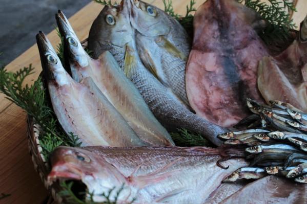 魚屋が選ぶ「旬の一夜干しセット」
