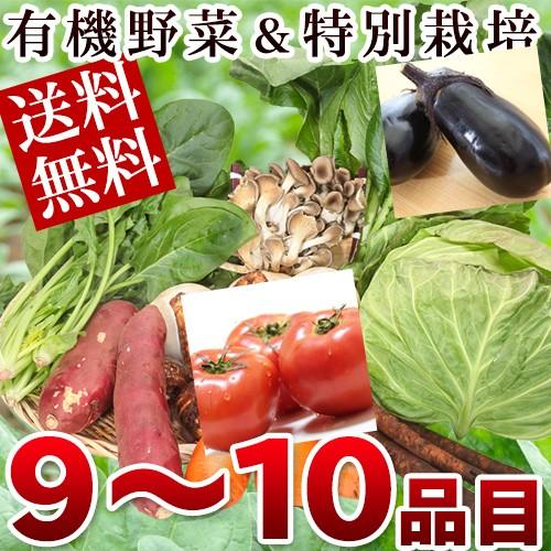 野菜セット 有機JAS認定野菜 特別栽培野菜 野菜セットSサイズ 9~10品目 送料無料