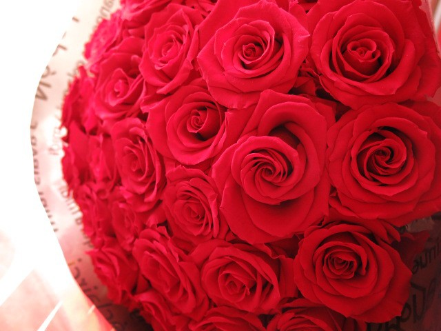 枯れない花 還暦祝い プリザーブドフラワー 花束 赤バラ 成人の日 大輪系赤バラ20本使用 プリザーブドフラワー 花束