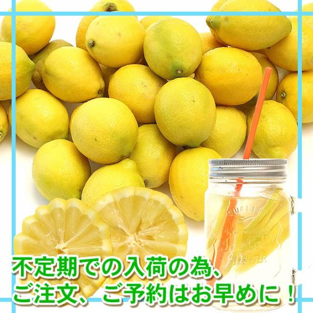 【送料無料】 レモン約5kgセット【防カビ剤不使用】 【ジュース野菜】【ジュース】
