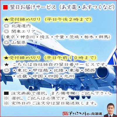 【送料無料 北海道産 最高級】生食 生ホタテ貝柱【特大 L 1kg 23個前後】お刺身 バター焼き!【ほたて】