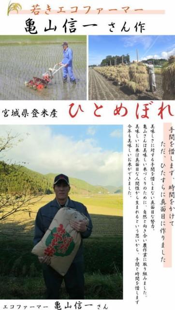 タイムセール 29年度【送料無料】亀山信一さんが作った米 宮城県登米産 ひとめぼれ 精米(白米)25kg (5kg×5袋)