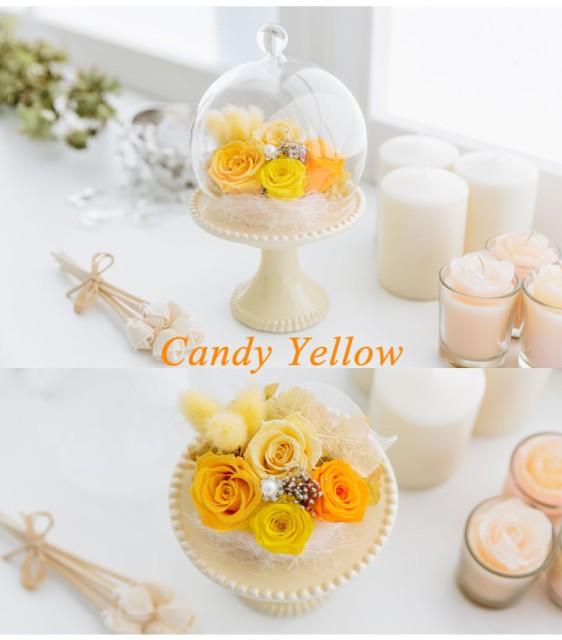 プリザーブドフラワー キャンディードーム 母の日 かわいい ギフト プレゼント /ギフト/プレゼント/父の日